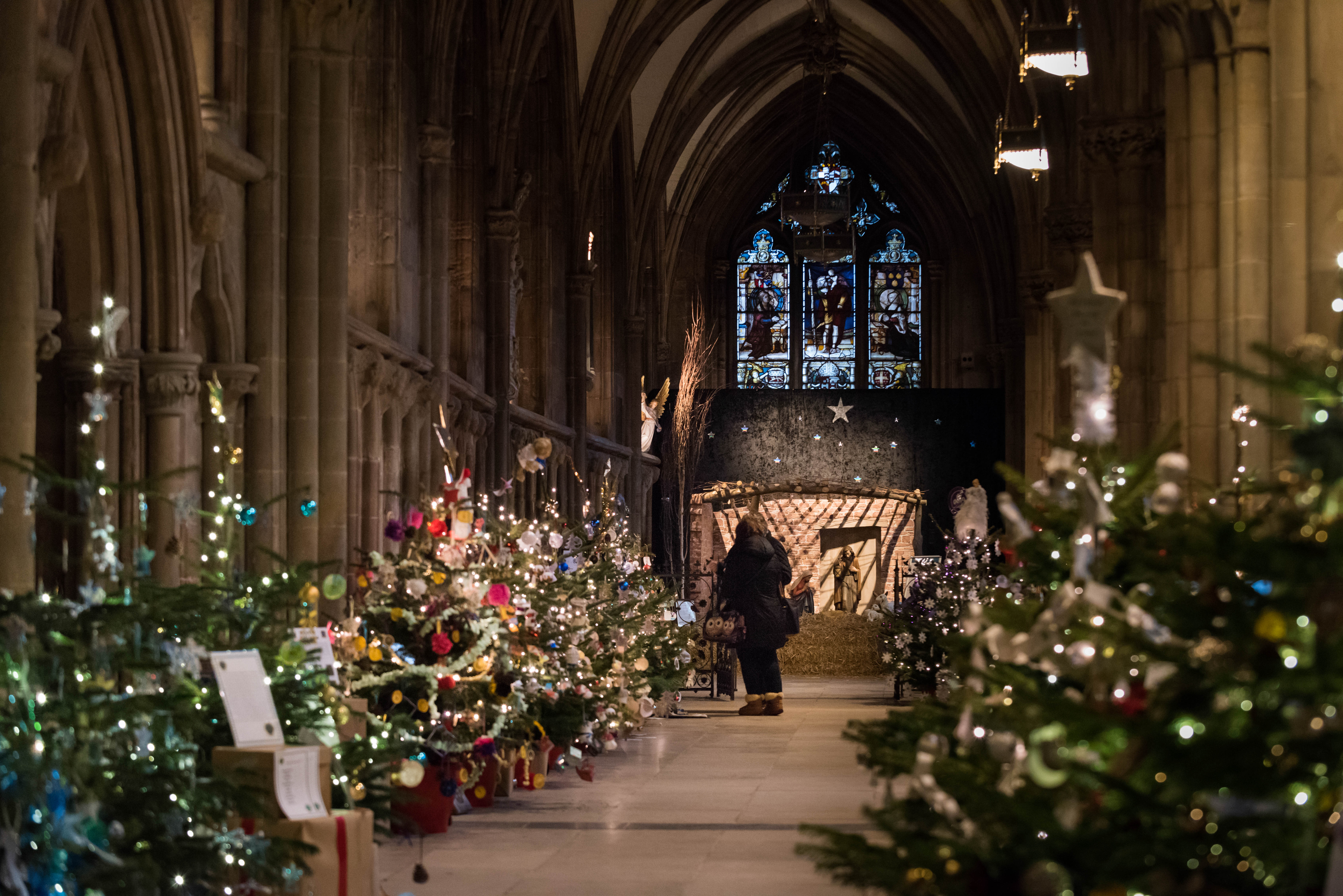 Lichfield Cathedral Christmas Tree Festival